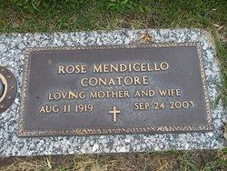 Rose <I>Mendicello</I> Conatore