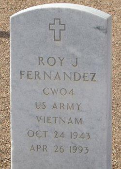 Roy J Fernandez