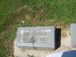 "Isolena ""Icy"" <I>Phillips</I> Arnold"
