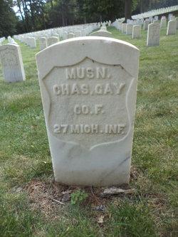Charles S Gay