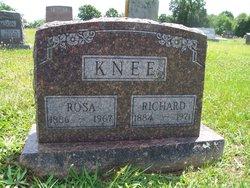 Rosa <I>Burris</I> Knee