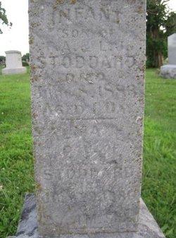 Alma Ethel Stoddard