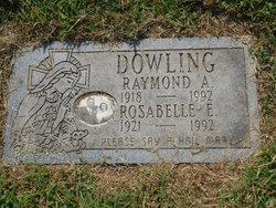 Rosabelle Elizabeth <I>Mills</I> Dowling