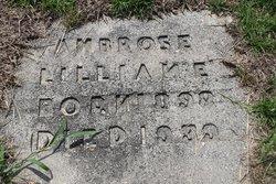 Lillian E Ambrose