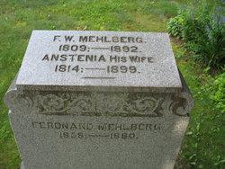 Anstenia Wilhemina <I>Witte</I> Mehlberg