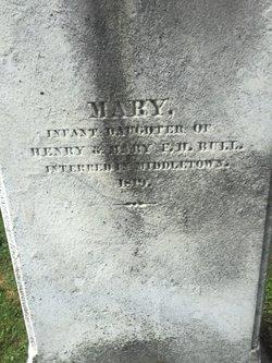 Mary Bull