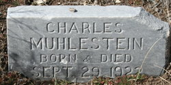 Charles Muhlestein