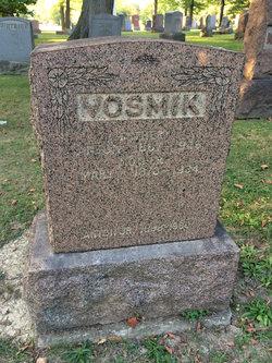 Anton J Vosmik