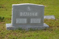 Rosalie M <I>Timmons</I> Daisey