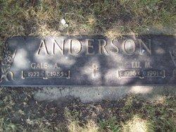 Gale Alden Anderson