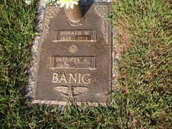 Donald W Banig