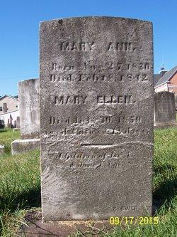 Mary Ann Ege