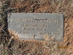 Jack Austin Watkins