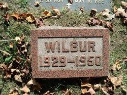 Wilbur N. Davoy