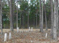 Blackshear Family Cemetery #1