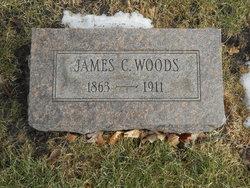 James C Woods
