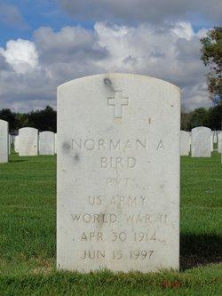 Norman A Bird