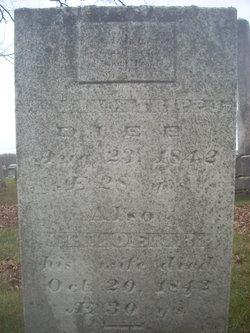 William Tripp, Jr