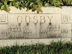 Susan M Cosby