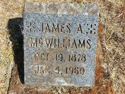 James A McWilliams