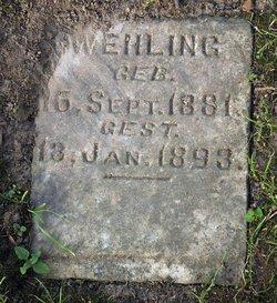 Agnes Wehling