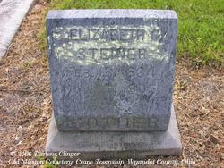Elizabeth G <I>Rinehart</I> Steiner