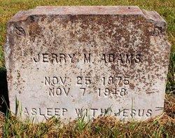 Jerry M. Adams