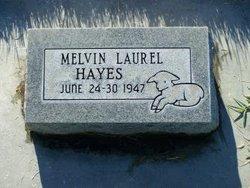 Melvin Laurel Hayes