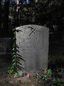 Mary R. Wills