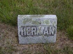 Herman Dexter Seavey