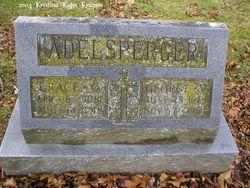 Adelsperger Name Meaning & Adelsperger Family History at ...
