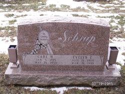 Evelyn E <I>Stillmunks</I> Schrup