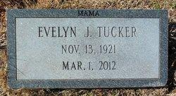 Evelyn <I>Jones</I> Tucker