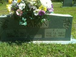 Mary Elizabeth <I>Akins</I> Aaron