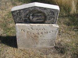 Frederick F Ladd