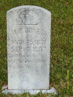 Artemus/Artimus Elijah Jones