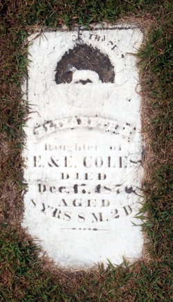 Elizabeth E. Coles
