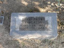 David Brown Fargason Jr.