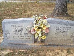 Patricia Ann <I>Meridith</I> Gaskins