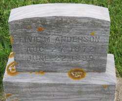 Elvie M. Anderson