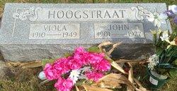 Viola <I>Alberts</I> Hoogstraat