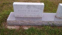 Esther Mary <I>Wagner</I> Borris
