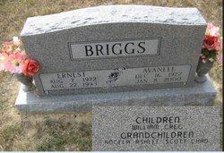 Avanell <I>Denison</I> Briggs
