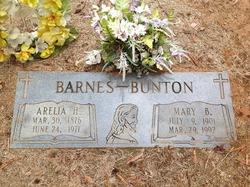 Arelia H. Barnes