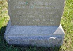 Elijah Dana Bangs