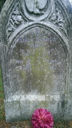 Harriet Hewitt