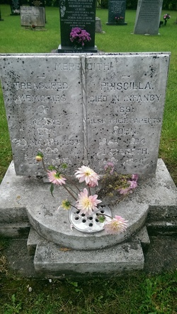 Jessie Meredith