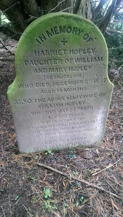 Harriet Hopley