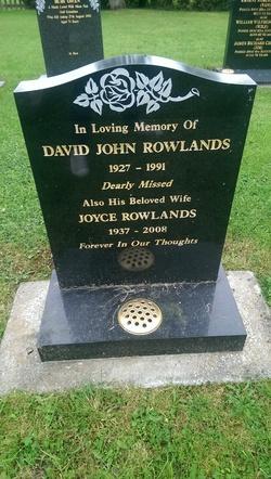 David John Rowlands