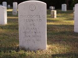 Theodore C Bernard
